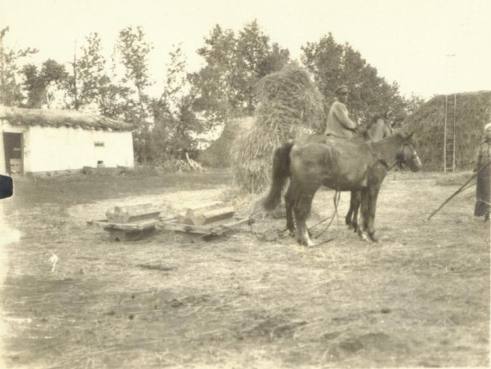 Шестерни для обмолота зерна в 19 -20 веке ( гарман).