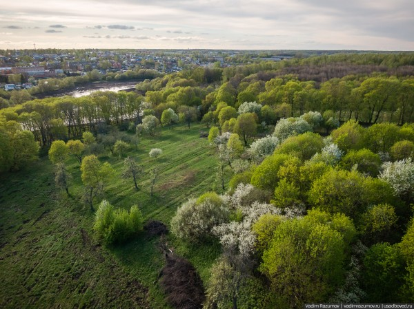 Ранняя весна в Церериной Роще. Богородицк, Тульская область