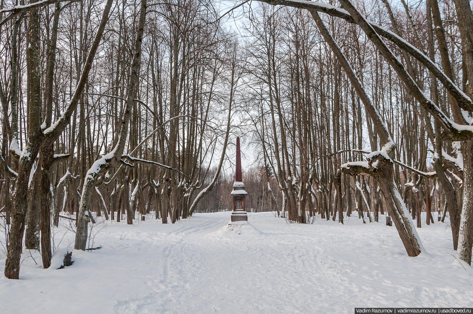 Липовые аллеи, семейные предания и мои топ-10 любимых парков