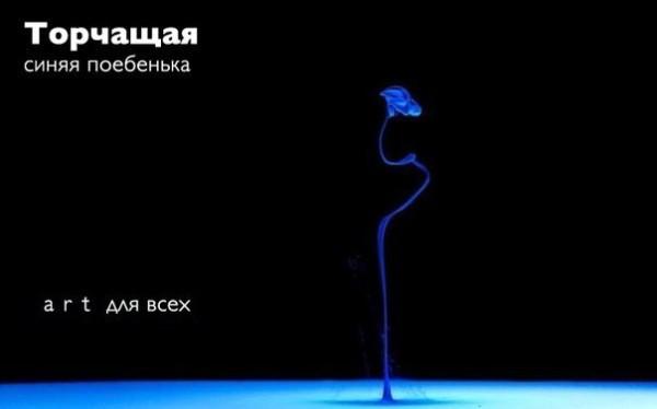 zlSOuX8kyHE