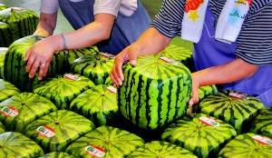 1352120007_melons