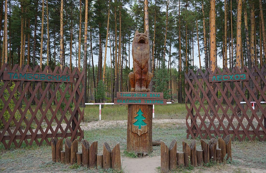 Тамбовский волк - надежный товарищ DSC01859.jpg