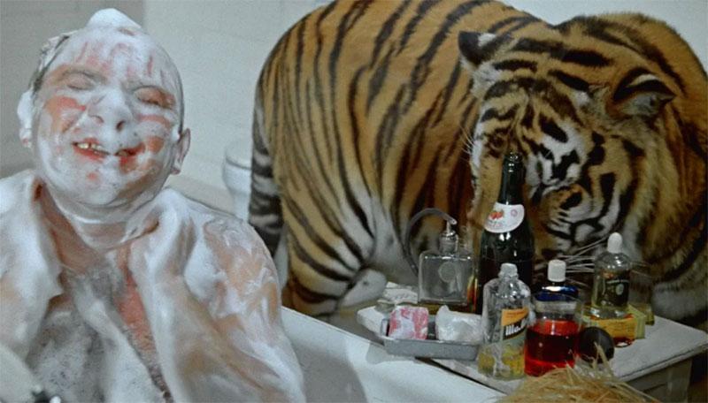 Борцам за права животных фильм Полосатый рейс лучше не смотреть 008.jpg