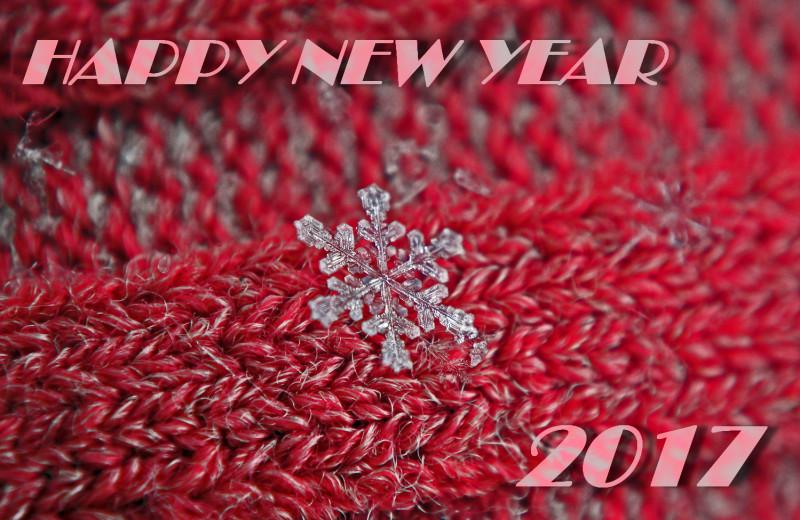 Snowflakes, 2012.01.30 (05)