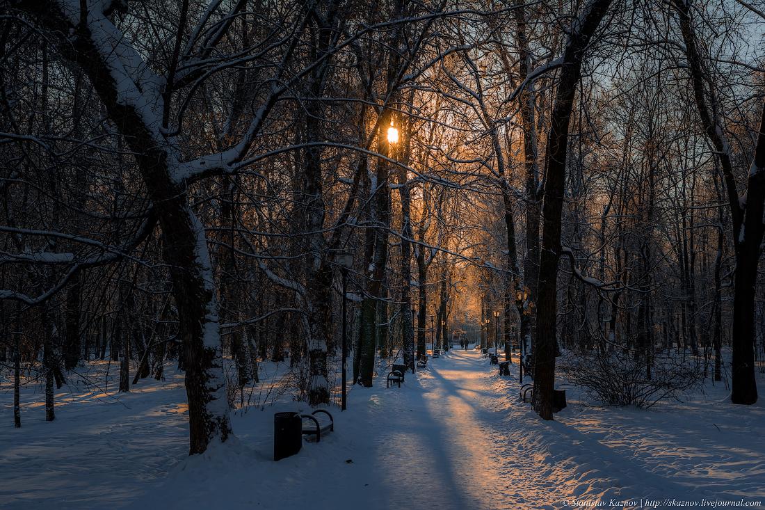 skaznov_66