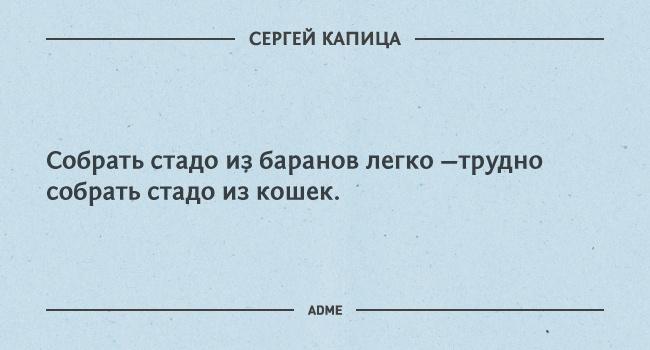 asdf341