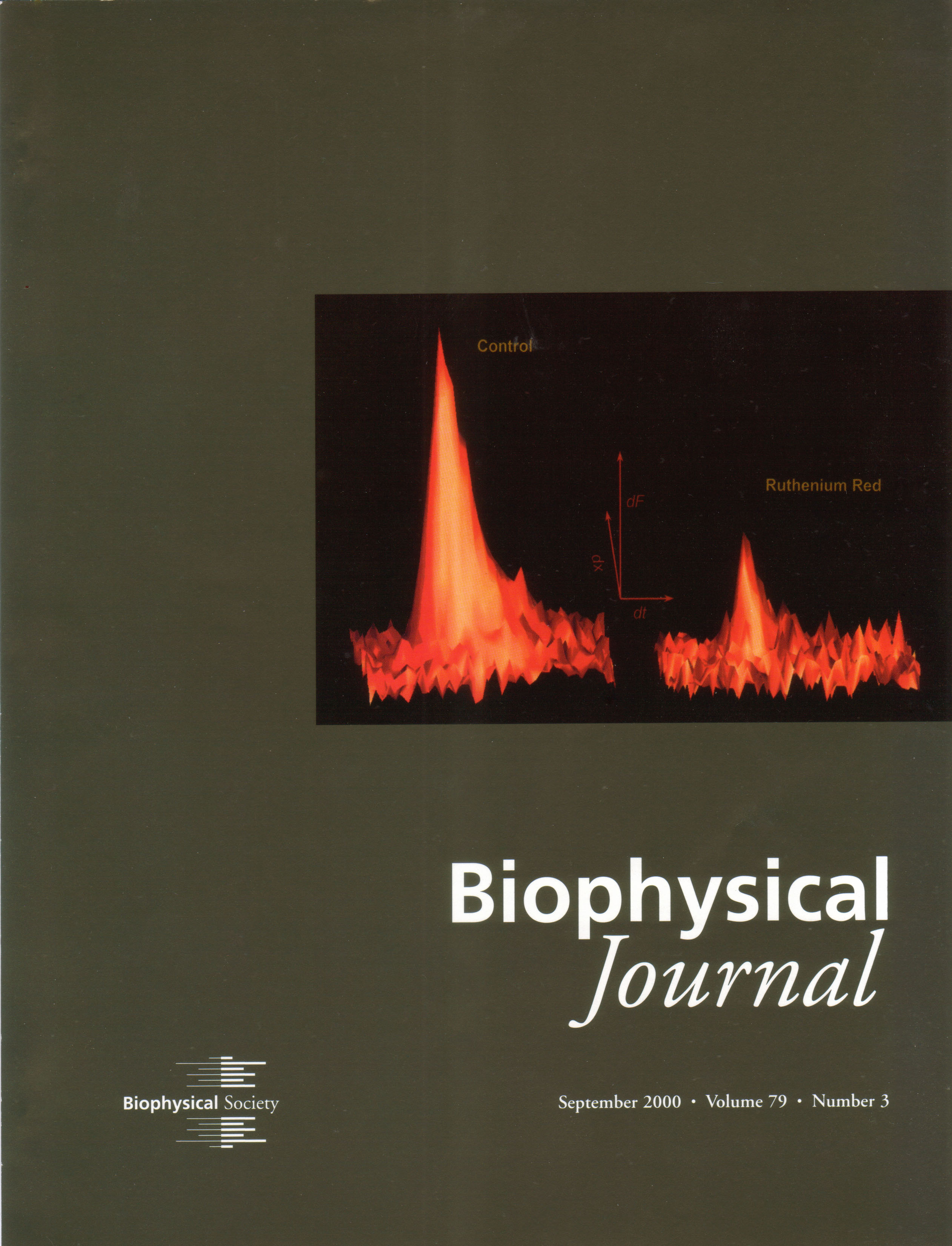 Cover BJ 2000