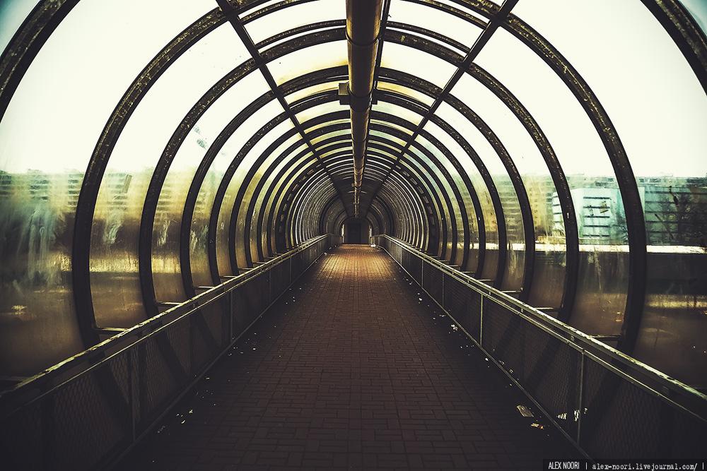 alex-noori_01