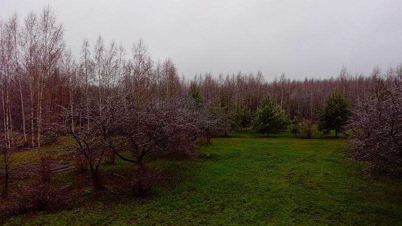 сад_осень