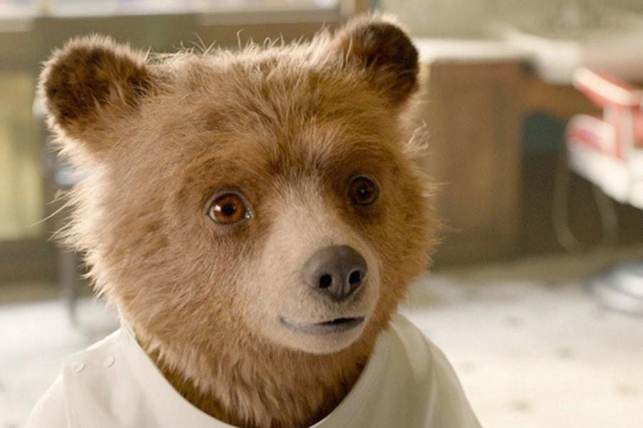 Медвежонок Паддингтон победил Минкульт и примазавшихся к нему Бондарчука и прочих