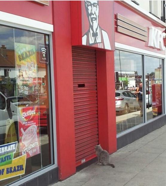 Английский KFC против DHL