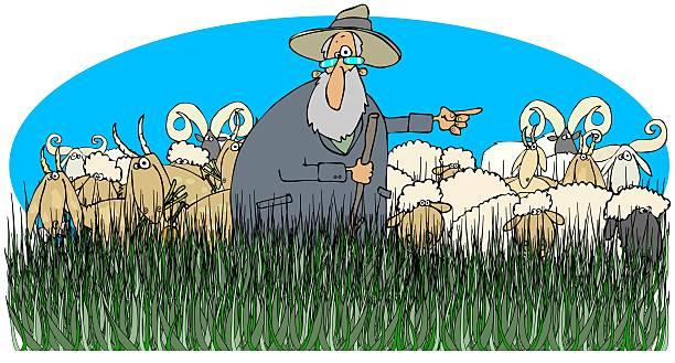 Жизненная история про маркетолога, чабана и его овец