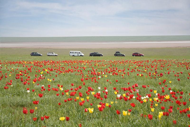 Чаша любви на мысе Тарханкут Крым где находится фото