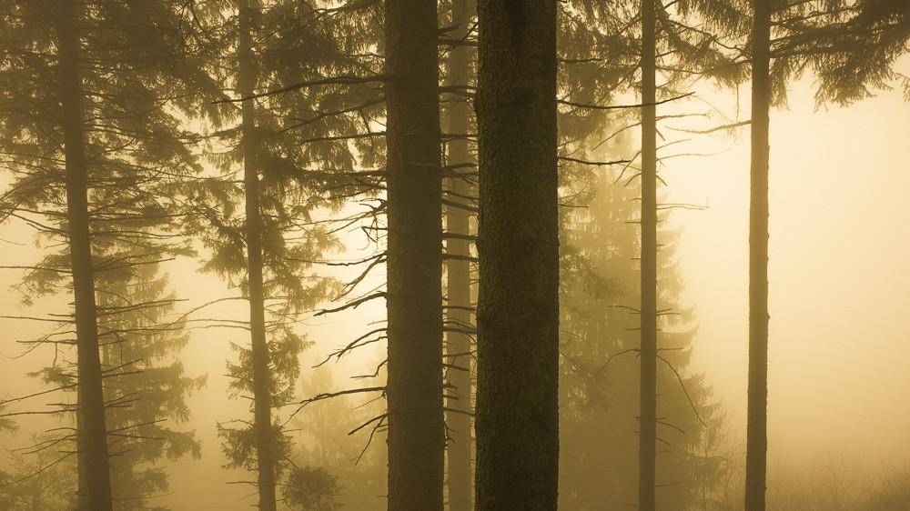 Smoke-059.jpg