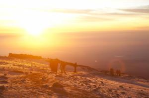 Золотой рассвет. Килиманджаро.