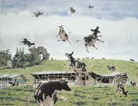 flying cow field