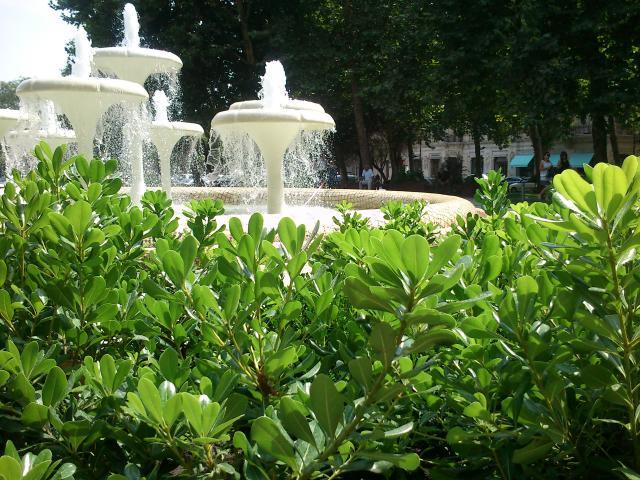 _0169_Как можно без фонтана