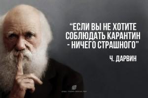 https://ic.pics.livejournal.com/valkiriarf/32746622/657457/657457_300.jpg