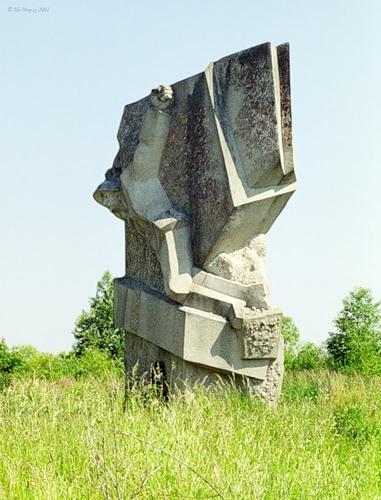 ВП036 Рябинки (Конаковский район), памятник герою Васильковскому