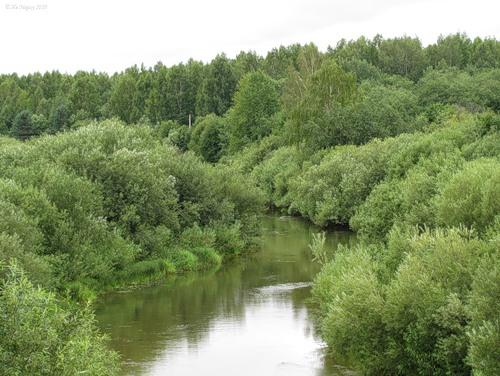 Река Нея в Парфеньево