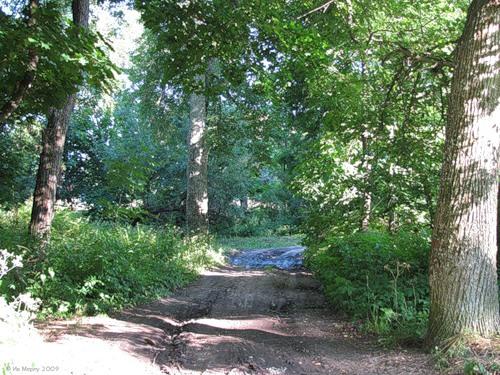 Новоалександровский, парк в бывшей усадьбе Нарышкиных