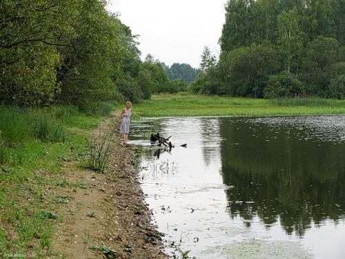 Река Вдовчанка в окрестностях Новоалександровского