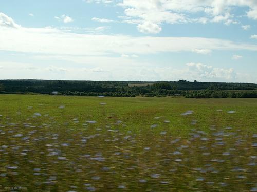Пейзаж в окрестностях Лесного
