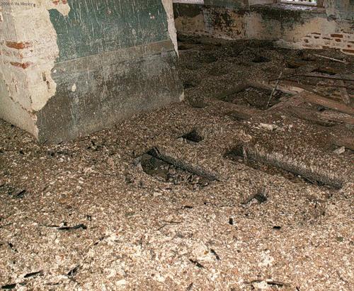 Гуано - толстый (10 см и больше) слой голубиного помёта. Троицкая церковь в с. Кой (2006)