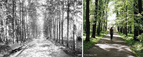 Общественный сад при фабриках в с. Бонячках (1912) - Городской парк г. Вичуги (2005)