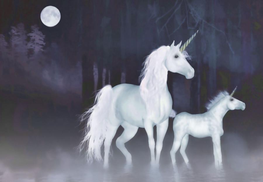 Unicornsf