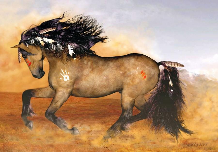 Cherokee 2-4