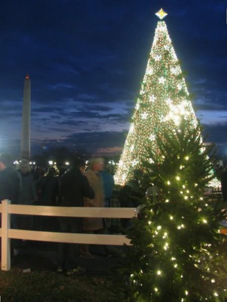 Washington Monument, National Christmas Treet, and state tree