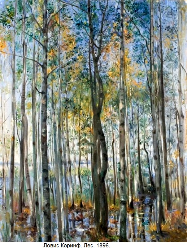Corinth_Forest