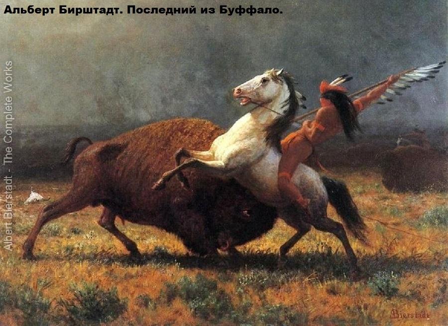 The-Last-of-the-Buffalo-II-large