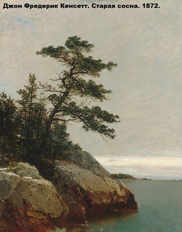 Kensett_John_F_The_Old_Pine_Darien_Connecticut