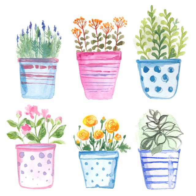flowers in a pot (4)