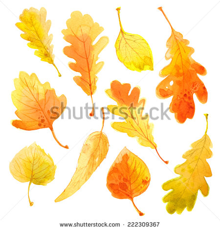 stock-photo-set-of-autumn-leaves-watercolor-leaves-on-a-white-background-222309367
