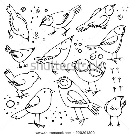 stock-vector-set-of-birds-sketch-line-vector-elements-on-a-white-background-220291309