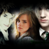 HP ~ Draco/Hermione/Theo.