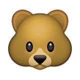 201-bear-face