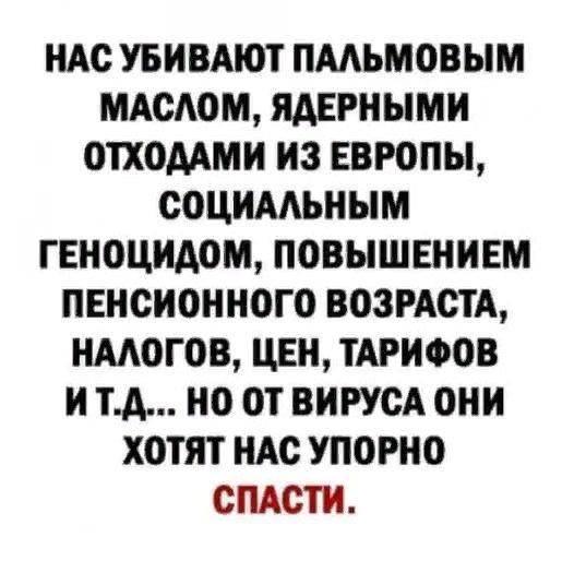 199883692_375194697273575_6476320219857093147_n