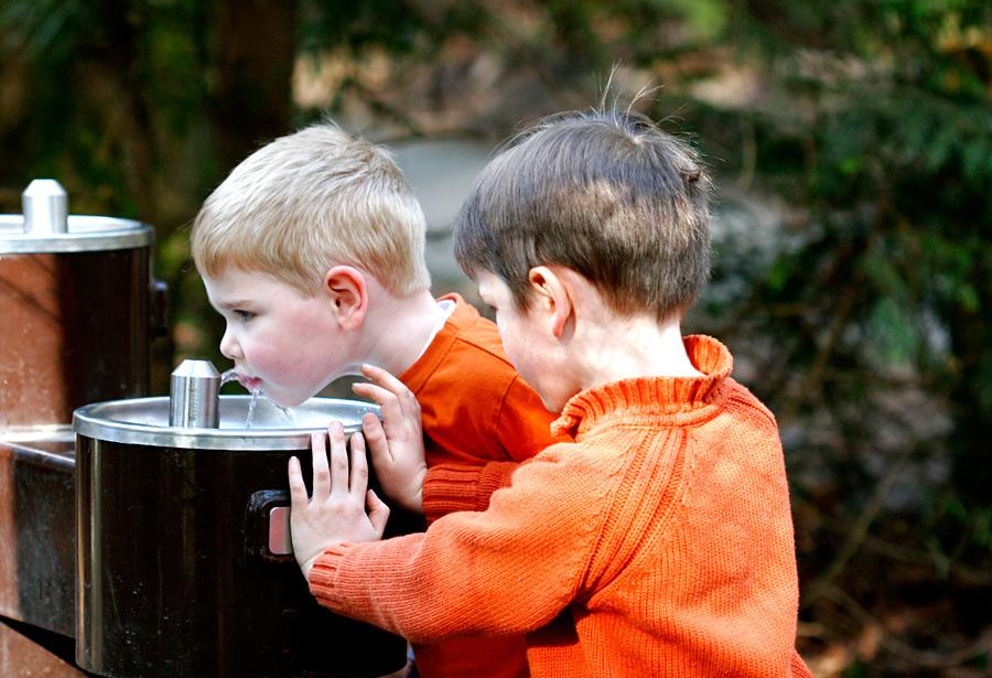 На улицы предлагают вернуть питьевые фонтанчики