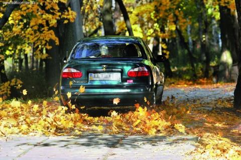 Осенние неприятности для автовладельцев и их устранение