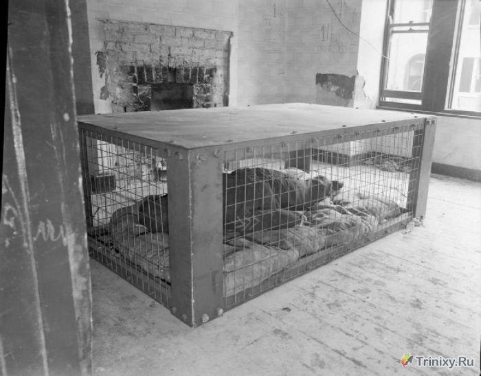 Кровать от бомбёжки, времён второй мировой...5