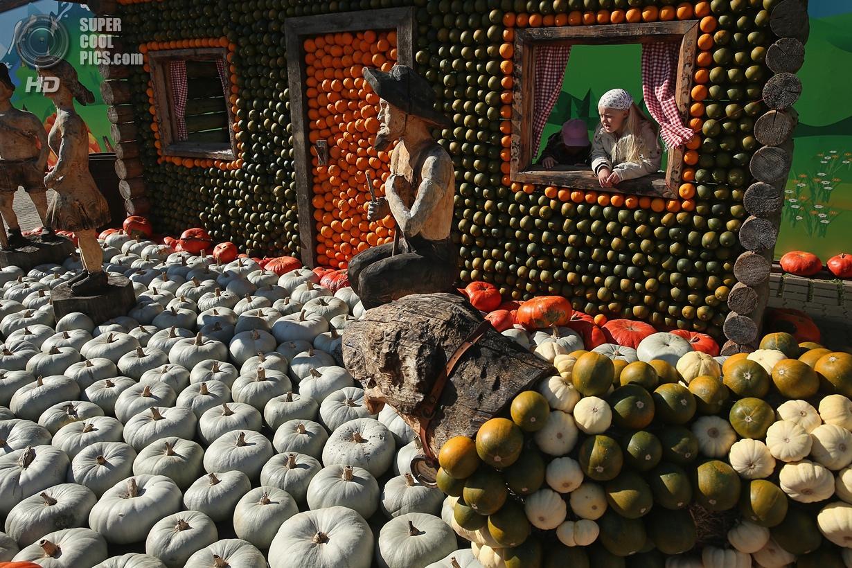 Тыква — царица осени. Выставка на ферме в Германии