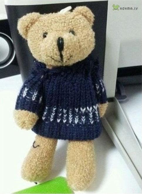 Что находится под свитером китайского плюшевого медвежонка?