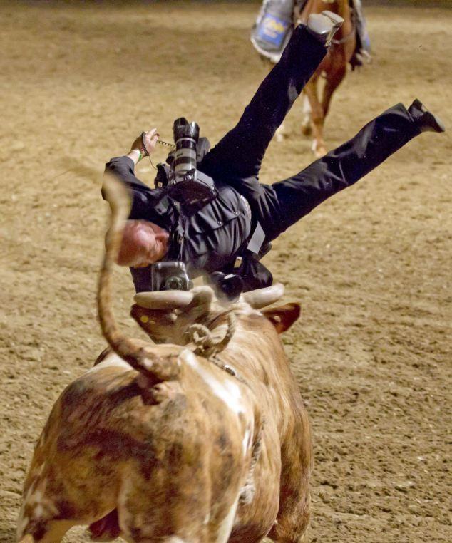 Фотограф решил снять быка крупным планом