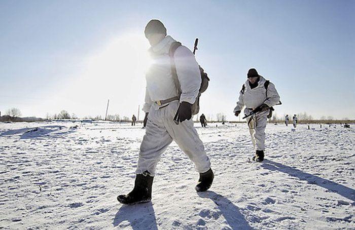 Канада заявила претензии на Северный полюс. Россия создает арктические войска