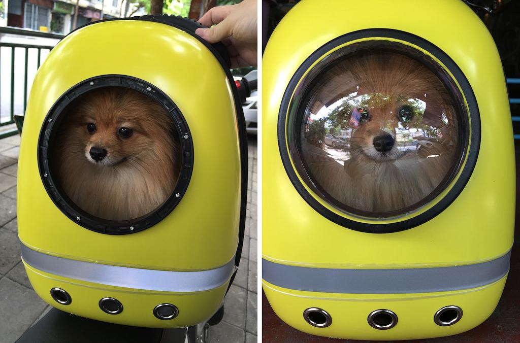 Космическая капсула space capsula для перевозки кошек и собачек