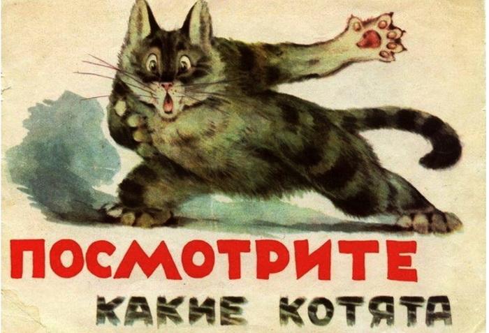 Котов любили также в советском союзе